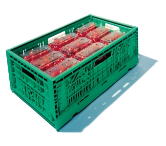 container plastik - box folding vented