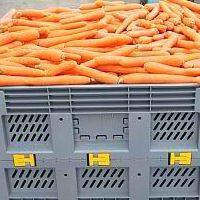 Plastic Bulk Container - best pallet box in Indonesia, Folding Vented, HDPE, Australian, B2GK1165V