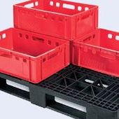 Plastic pallets in Jakarta - a strong plastic pallet from Plastic 2 go Indonesia, Euro 1200x800 , Medium Duty, P2G880